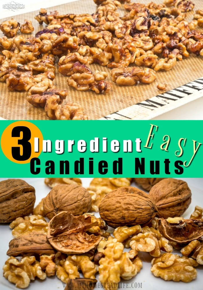 how-to-make-candied-nuts-walnuts