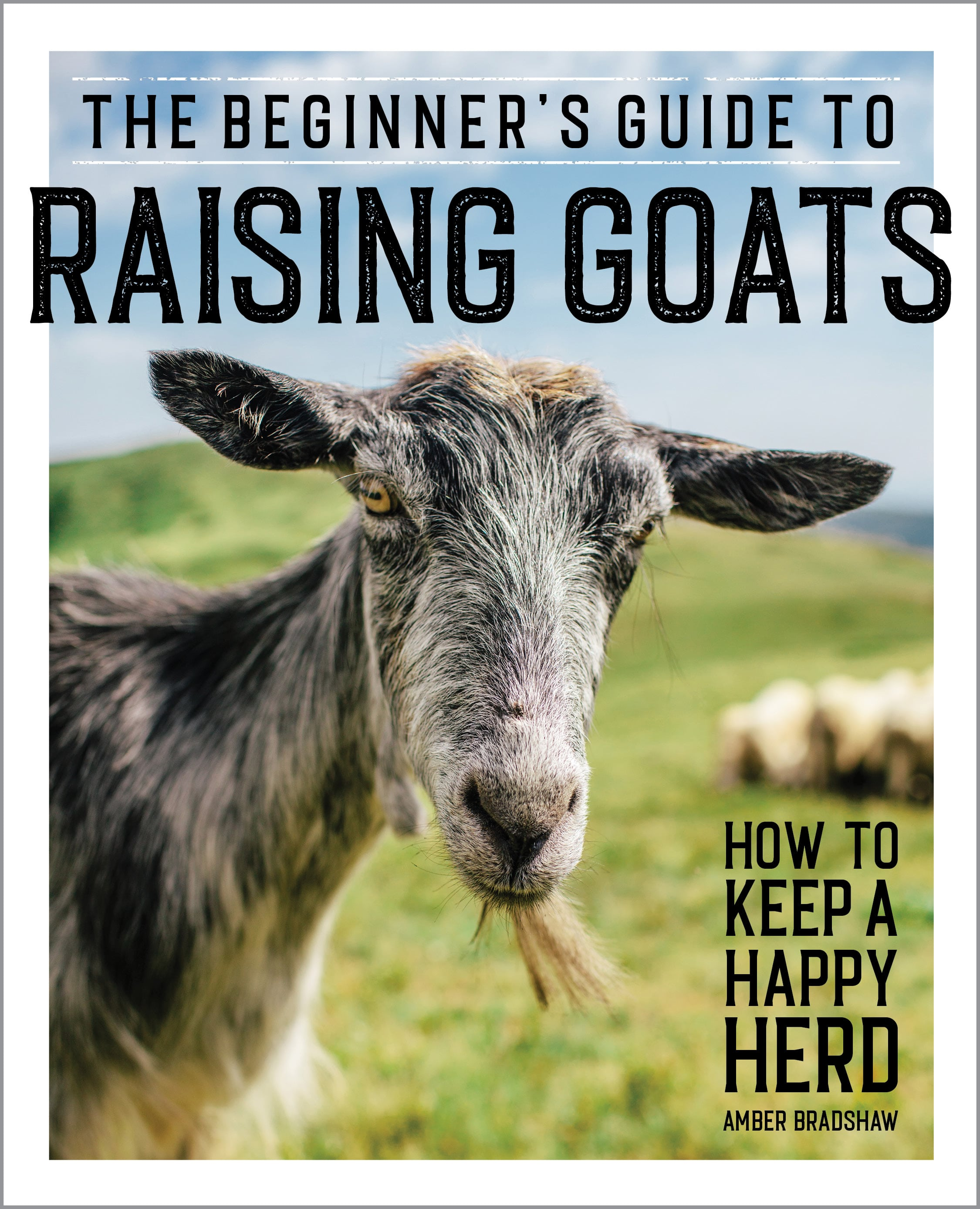 raising-goats-for-beginners