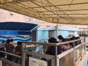竹島水族館のアシカショー会場
