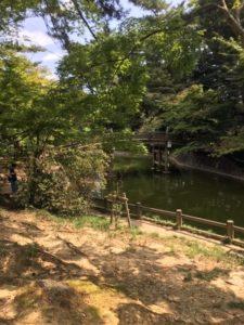 ひがし公園の池と橋