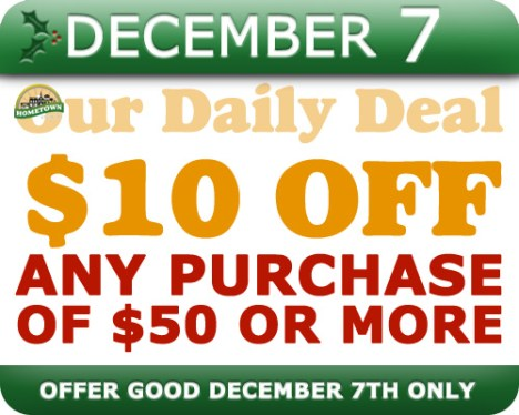 Hometown Bicycles Daily Deal December 7