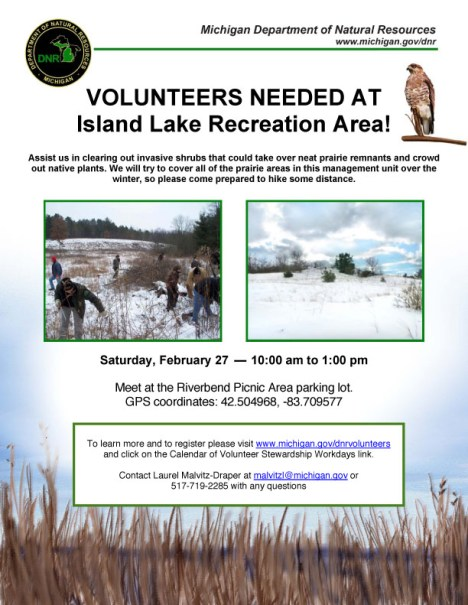 Island Lake Clean-Up flier for 2/27/16