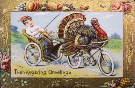 Happy Thanksgiving! turkey on bicycle