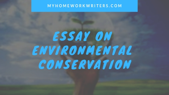 Essay on Environment Conservation | Cheap Essay Writing Help