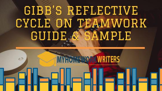 Gibb's Reflective Cycle on Teamwork Guide & Sample