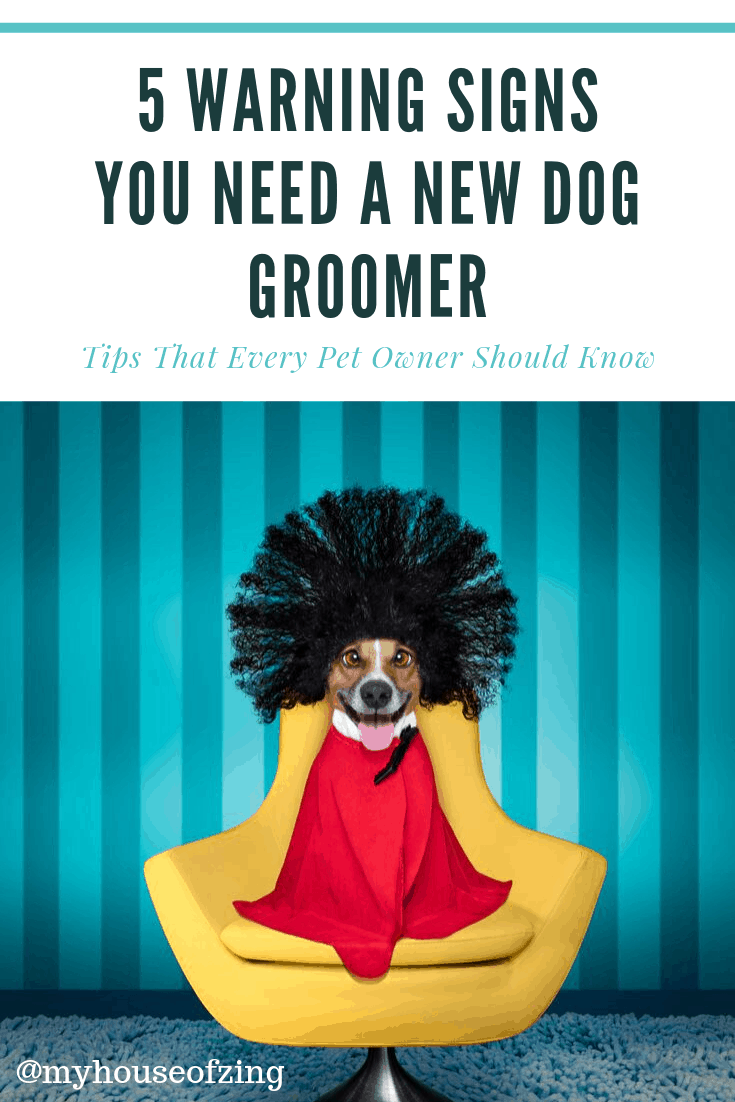5 Warning signs You need a new dog groomer