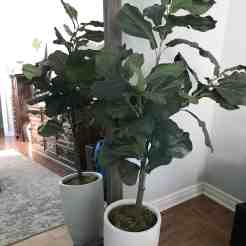 Large Fake Tree