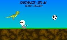 ss_run