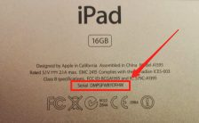 Check Ipad icloud status with Serial