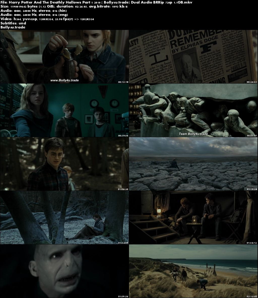 Harry Potter And The Deathly Hallows Part 1 2010 BRRip Hindi Dual Audio 720p Download