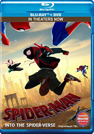 Spider-Man Into the Spider-Verse 2018 BRRip 350MB English 480p ESub Watch Online Full Movie Download bolly4u