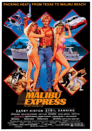 Malibu Express 1985 BRRip 950MB Hindi Dual Audio 720p Watch Online Full Movie Download bolly4u