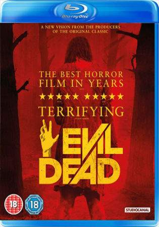 Evil Dead 2013 BRRip 750MB UNRATED Hindi Dual Audio 720p Watch Online Free Download bolly4u