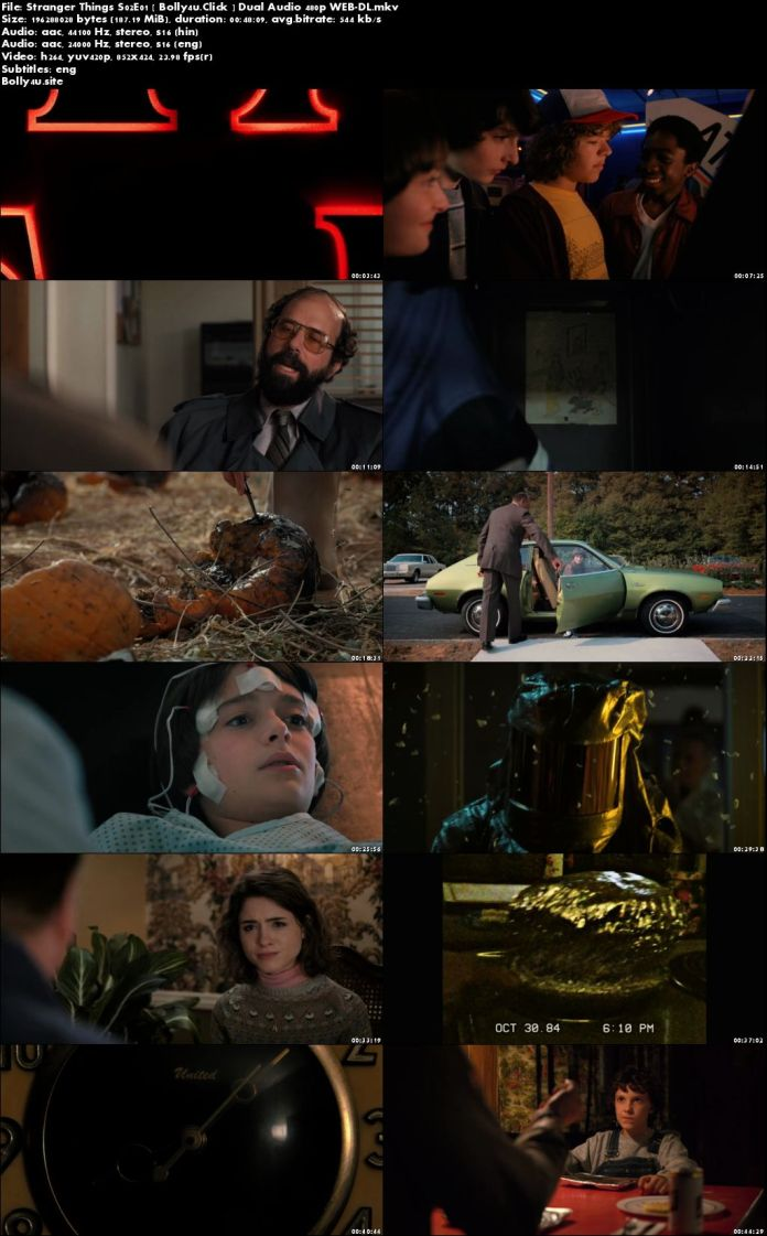 Stranger Things S02 WEB-DL 1.7GB Hindi Dual Audio Complete 480p Download