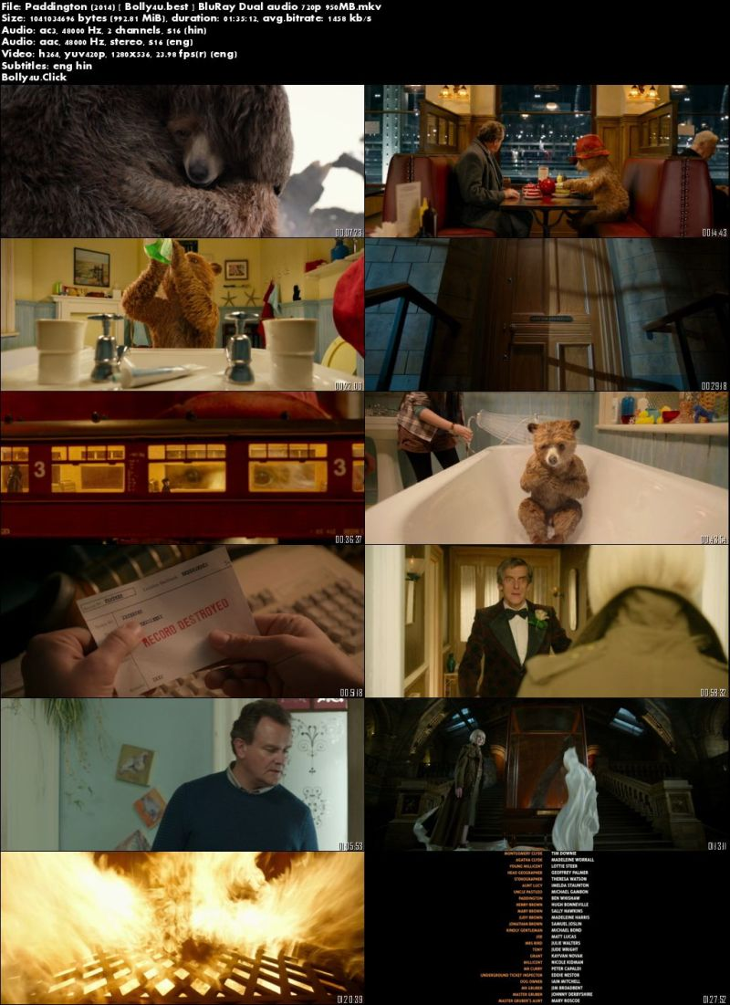 Paddington 2014 BluRay 300Mb Hindi Dual Audio 480p Download