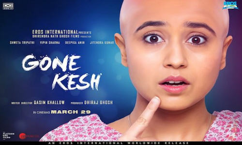 Gone Kesh 2019 WEB-DL 300MB Hindi 480p Watch Online Full Movie Download bolly4u