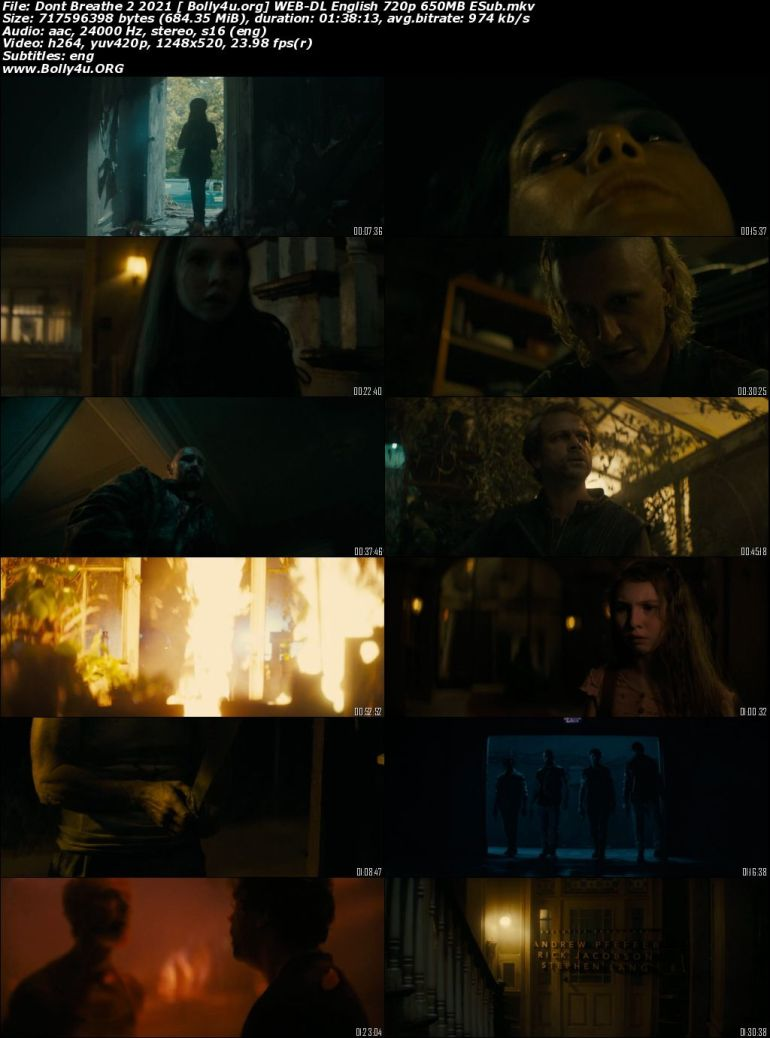 Dont Breathe 2 2021 WEB-DL 300Mb English 480p ESubs Download