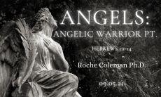 Angelic Warrior pt. 1