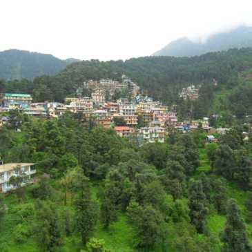 Descubre Qué Hacer en Dharamsala