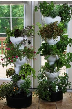 Foody Vertical Gardens
