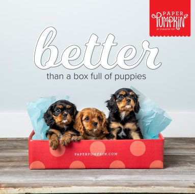 Stampin' Up! Paper Pumpkin Subscribe. Box of Puppies