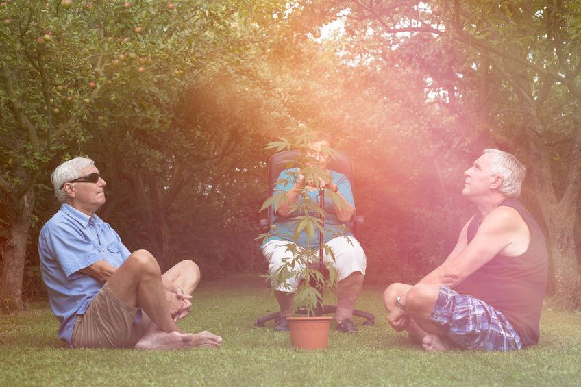 CBD MINIMIZES PHARMACOLOGICAL PRESCRIPTIONS IN THE ELDERLY