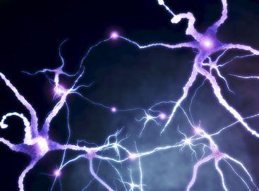 Fibromyalgia - The effect of medical CBD on fibromyalgia