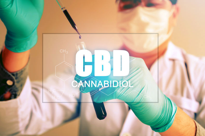 Excercise Training with CBD: how to include it in the diet
