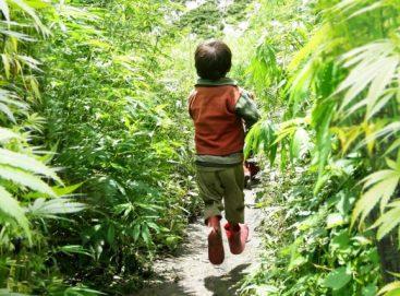 IS CBD SAFE FOR CHILDREN?