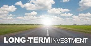 Best long term investments for 2013; Best investment options
