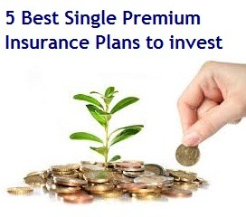 Best Single Premium Insurance Plans to invest