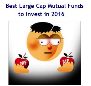 Best Large Cap Mutual Funds to invest in 2016