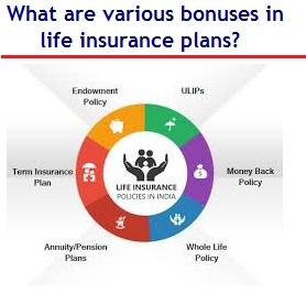 What are various bonuses in life insurance plans