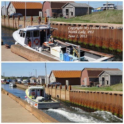 Lobster Fishing Boats, North Lake, PEI [June 1, 2012]