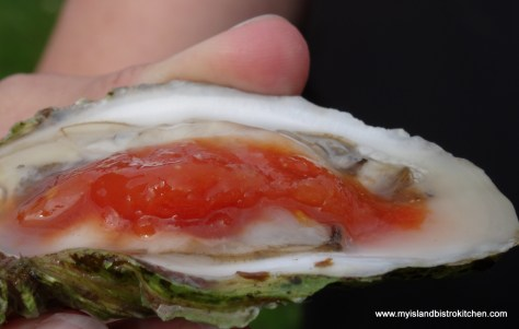 Colville Bay Oyster with Bloody Mary Ice