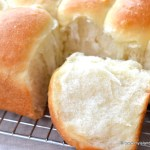 Homemade Pan Rolls