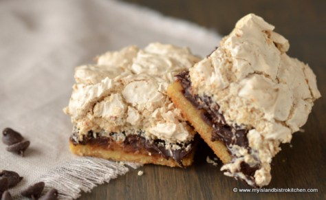 Decadent Chocolate Chip Squares