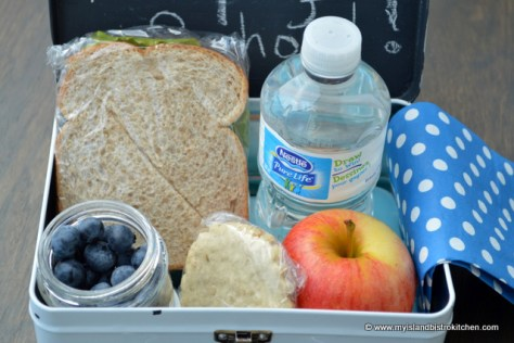 School Lunch: Tuna Salad Sandwich, Apple, Blueberries, and an Oatcake