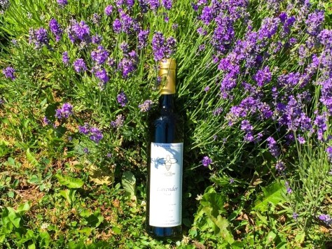 Lavender Honey Mead (Photo Submitted by Island Honey Wine Company)