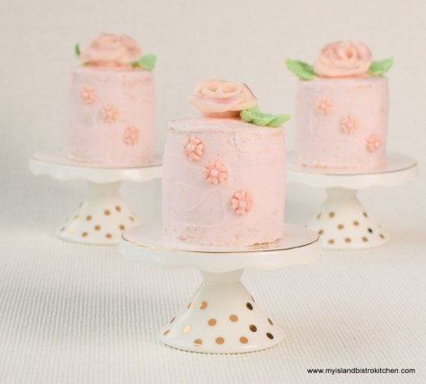 A trio of Mini Cakes