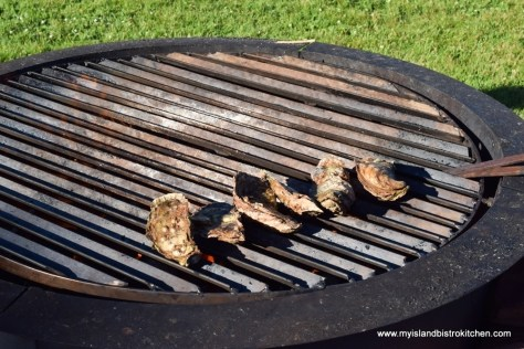 PEI Oysters on the Grill at The Table Culinary Studio, New London, PEI