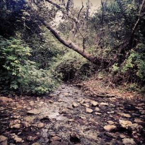 Hiking down Nachal Kziv