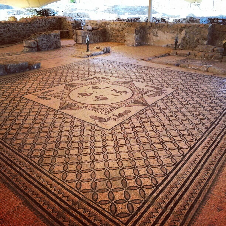 Byzantine Synagogue at Ein Gedi