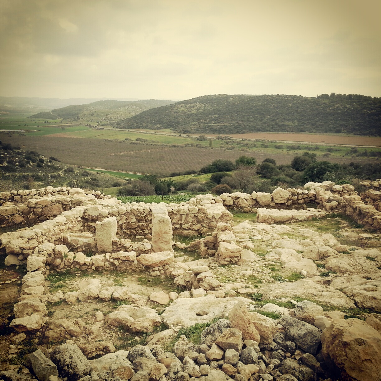 The Israelite fortress from the period of King David at Khirbet Qeiyafa
