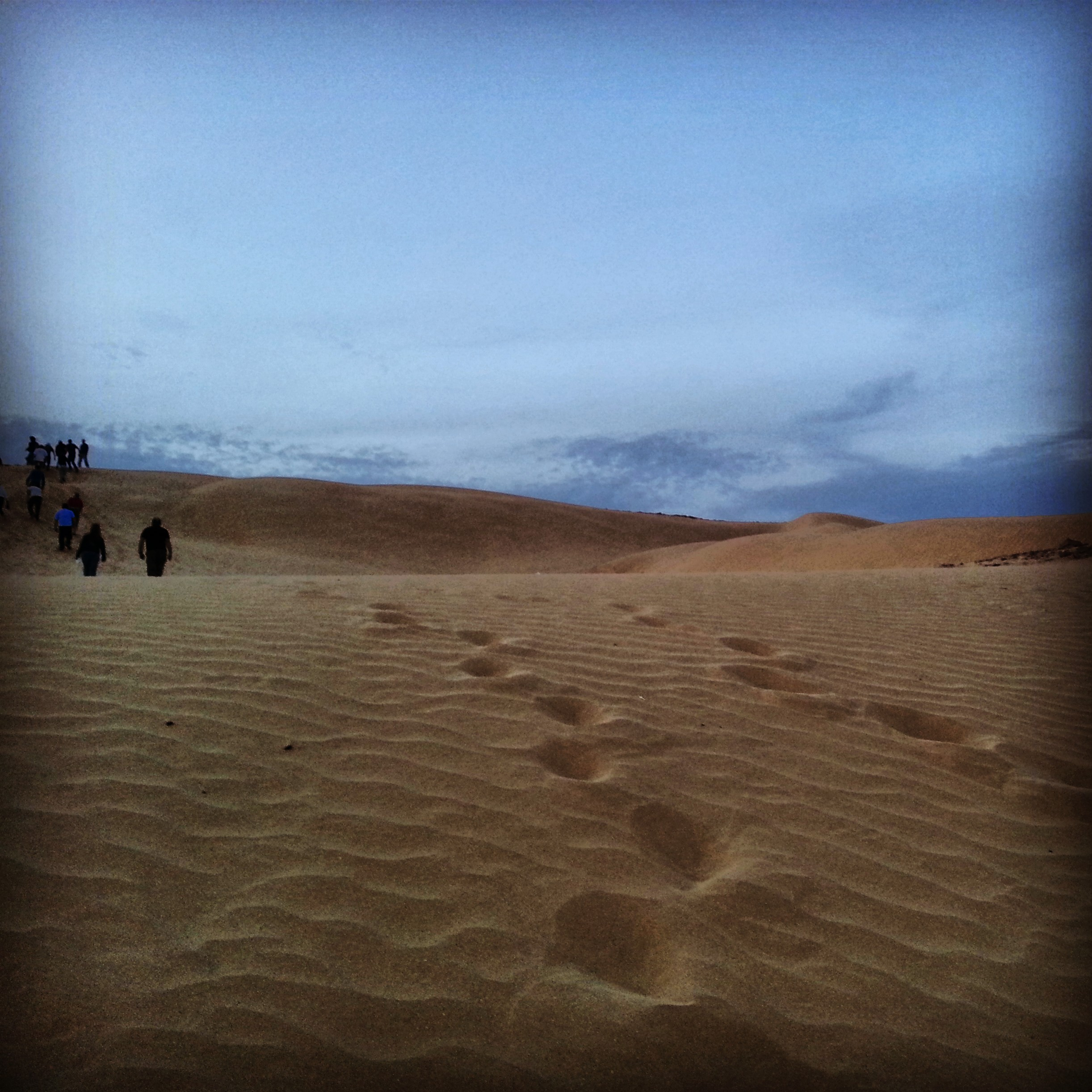 Kasui sand dunes in the Ovda Valley