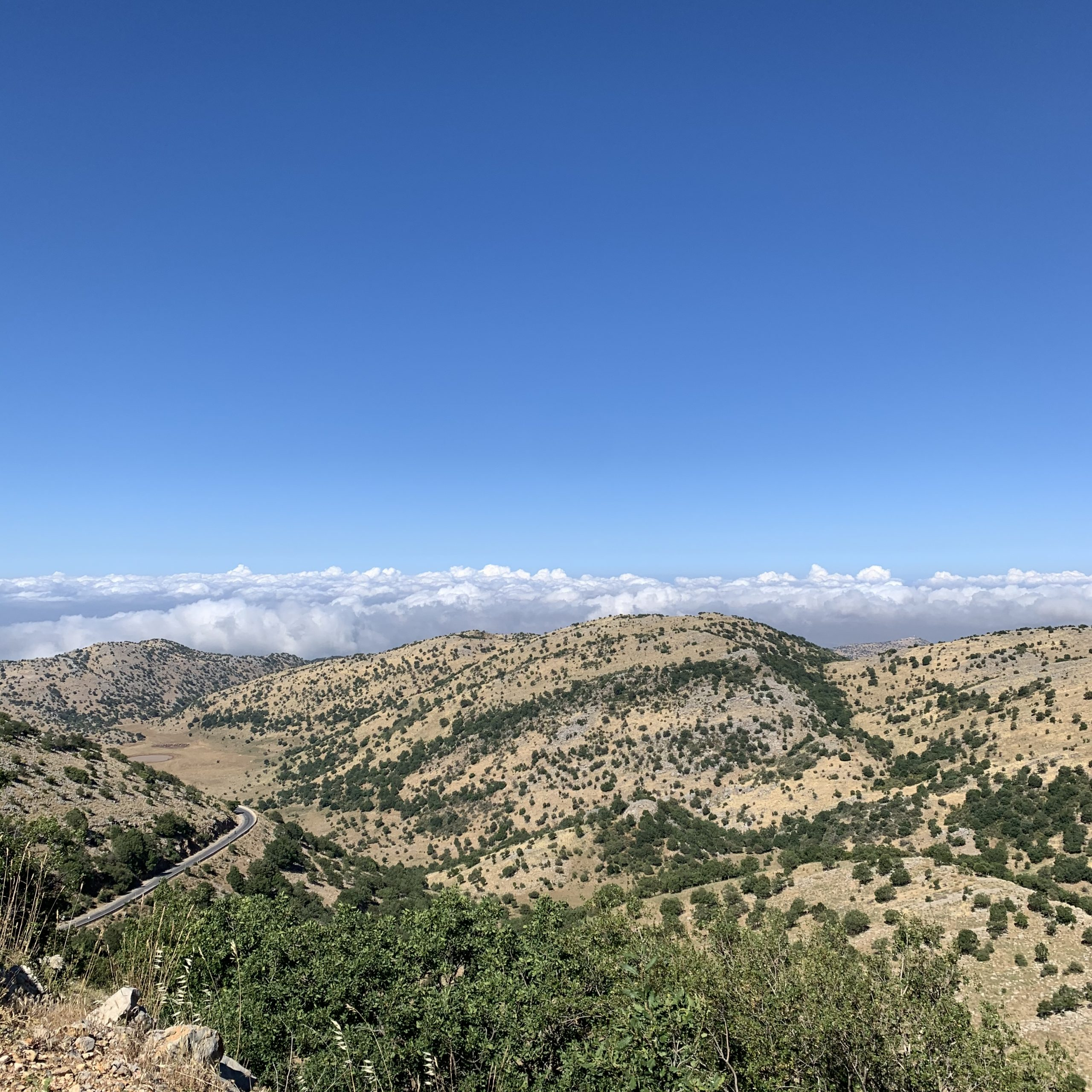 View looking out westwards from Mt Hermon