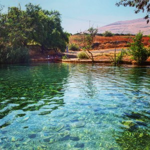 Relaxing at the Shokek Spring in the Park of Springs in Northern Israel