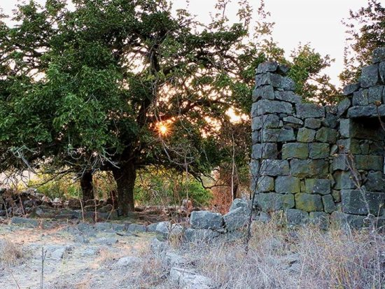 Golan-Heights_myIsraelWineTours