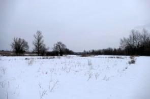 Плодородная пойма реки Северский Донец