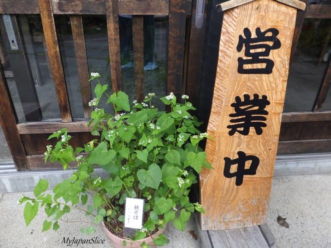 Nagano_soba_2